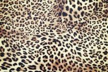 Zebra flexfolie
