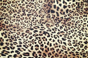 Leopard flexfolie